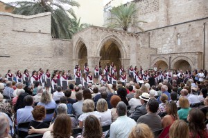 public concert