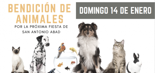 Bendición de animales
